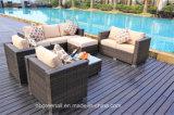 Mobilia esterna del rattan di combinazione del sofà di vimini comodo del giardino (GN-9114S)
