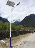 Luz de calle del panel solar de la alta calidad 20W-200W en luz solar