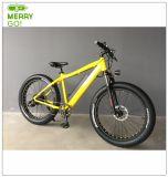 500W電気自転車の電子バイクのための大きい力モーター中国製