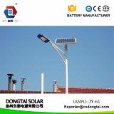 Luz de calle solar del precio de fábrica/Lightaaa008