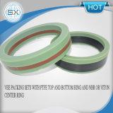 eine flexible axiale Lippenc$v-ring Dichtung für Wellen und Peilungen