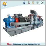 Une grande capacité double en acier inoxydable d'aspiration de l'irrigation agricole la pompe à eau