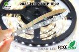 DC12V /24V souple étanche IP68 60LEDs/mètre Hot Sale Numérique 300LED SMD2835 Bande LED