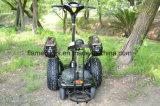 골프 선택권을%s 거물 그리고 작은 바퀴를 가진 4개의 바퀴 전기 2륜 전차 Slef 균형을 잡는 스쿠터