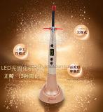빛을 치료하는 딱따구리 교정 무선 최고 가격 치과 LED