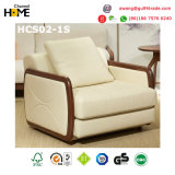 Мебель европейской домашней софы ткани комнаты мебели живущий установленная (HCS02)