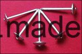 De gegalvaniseerde Spijkers van /Roofing van de Spijker van het Dakwerk van de Paraplu Hoofd met het Hoofd van de Paraplu