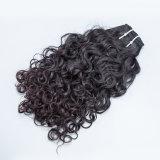 Extensão Kinky do cabelo Curly de cabelo naturalmente ondulado do Indian do Virgin
