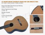 Fabrik-Großverkauf-Doppelt-oberste feste klassische Gitarre (SC093FD)