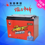 bateria acidificada ao chumbo do veículo eléctrico da longa vida de 6-Dzm-45 (12V45AH) Dongjin