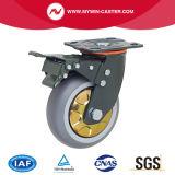 Chasse fixe de plaque de roue d'Atrovirenstpr première
