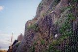 Ячеистая сеть предохранения от Xinao падая сетчатая шестиугольная