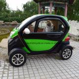 عال سرعة ذكيّ مدنيّ سيّارة منفعة [إلكتريك كر] مصغّرة لأنّ عمليّة بيع
