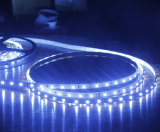 5050 lumière imperméable à l'eau au néon mise en pot de véhicule de la bande de colle mince d'unité centrale IP65 DEL