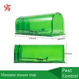 Plastique aucune trappe sous tension humanitaire de souris de coin de lutte contre les rongeurs de souris de loquet de planche de mise à mort