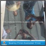 الصين رخيصة يصقل فضة تنين أسود رخام لأنّ [فلوورينغ تيل]