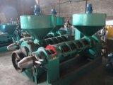 20tons por la máquina de la prensa de petróleo de cacahuete del día