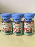 최고 식욕 억제제 규정식 환약은 Detox Moringa 분말 캡슐을 정화한다