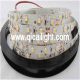 Gran tira de LED impermeable pared