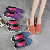 Les chaussures de marche les plus neuves d'espadrilles de piste de Slip-on de femmes personnalisent en gros (MB7094)