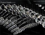 Кристально чистый звук подвесной лампы матового стекла подвесной светильник тени, подвесная установка внутри помещений лампы Om6833