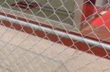 Kettenlink-Zaun mit Qualitäts-Klammer