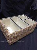 El rectángulo de almacenaje cristalino del envase del Rhinestone de Bling Bling del rectángulo de almacenaje de la cubierta del diamante lleno para compone (TBB-rectángulo 023)