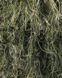 Respirável Leve Branco Cinza Ghillie Suit Dry Field (FY-003)