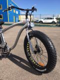 E-Bici eléctrica de la montaña del neumático gordo 750With500W