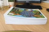 2017 Douane Kraftpapier Sketchbooks van de Notitieboekjes van het Nieuwe Product de Bulk Spiraalvormige