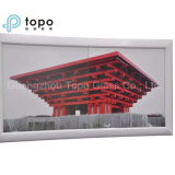 Low Iron Anti-Reflective Solar Panel Ar beschichtetes Glas (AR-TP)
