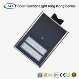 série solar de King Kong da luz do jardim 30W com de controle remoto