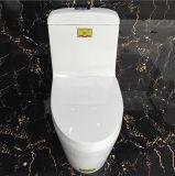 Watercloset van de Waren van Foshan van Ovs het Sanitaire Ceramische Met zelf-Schone Nano Glaze