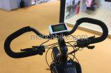 Shimanoギヤモーター電気バイクのフレーム都市E自転車のE自転車のスクーターの新しいリチウム電池