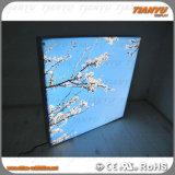 Caixa leve de anúncio de alumínio do diodo emissor de luz de Frameless