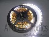 striscia iLinear di SMD LED (HFS-R360W-600600-L1)