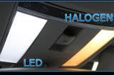 Canbus LED 39mm SMD2835 LED Lights für Cars