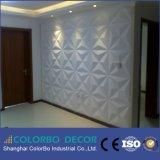 Panneaux de mur 3D décoratifs de panneau de mur de Leahter