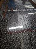 Strato inciso personalizzato dell'acciaio inossidabile per costruzione ed il materiale da costruzione