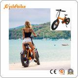 Un couple élevé Ncyclebike 48V 750W orientées 20''x4.0 Fat Pneus vélo électrique pliant