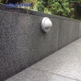 暗いG654花こう岩のゴマの灰色の敷石のKerbstoneの花こう岩の石の花こう岩のタイルの平板