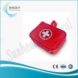 Cassetta di pronto soccorso di standard nel sacchetto della vita
