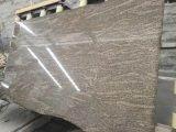 Натуральный камень Китая Коломбо желтый гранит плитки для пола на стену