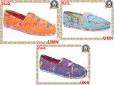 Les plus défuntes chaussures de toile de conception, chaussures de femmes (SD6200)