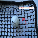 O primeiro golfe preto bem escolhido pratica a rede