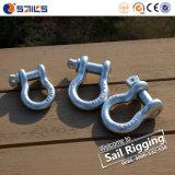 La goccia li ha forgiati tipo anello di trazione di ancoraggio di Pin della vite