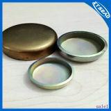 Enchufe de cobre del motor de Disel de las mayores partes de Xtseao