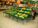 Soporte de exhibición vegetal