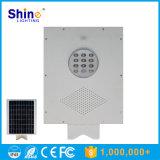 Hot Selling 12W lampe de jardin solaire LED de haute qualité
