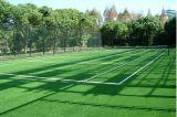 Erba calda di tennis del fornitore 20mm della Cina per la corte di tennis (SF20)